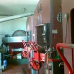 Frantoio sappracone (1)